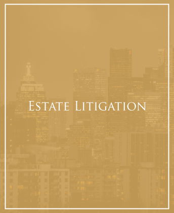 Civil Litigator North York